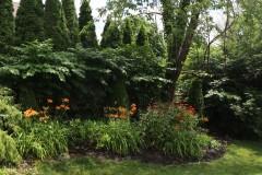 36.Back-Garden-4