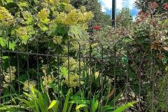 60.Newtown-Garden-Fll