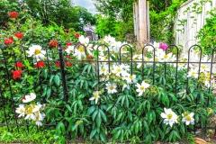 63.Newtown-Garden-ll
